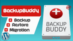 How to Safely Backup your WordPress Website 1